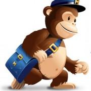 Mr Mail Chimp