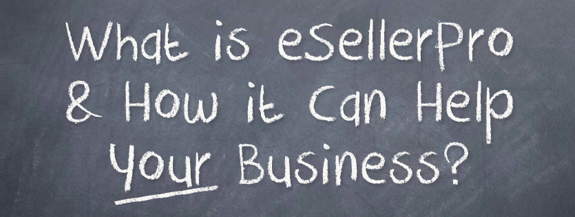 What is eSellerPro & How it Can Help Your Business?
