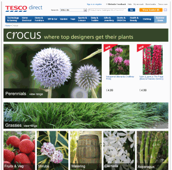 Tesco Marketplace Crocus Store