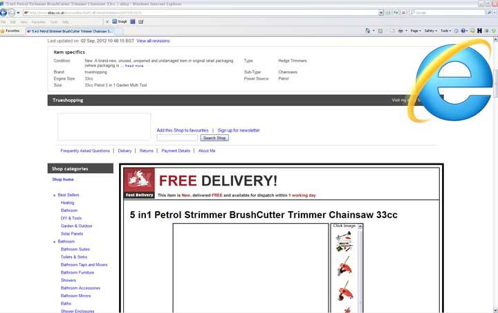 eBay Listing in Internet Explorer
