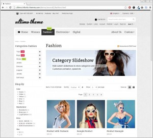 Our Magento Website