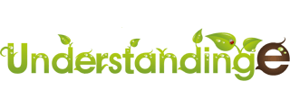 UnderstandingE